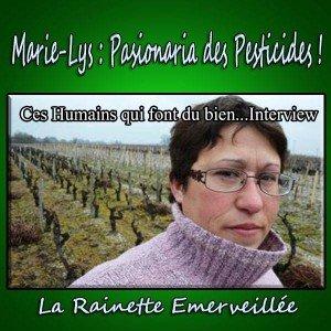 image mon interview la rainette
