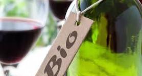Où trouver un vin bio sur le Médoc ?